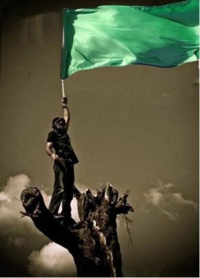 Зелёное Знамя